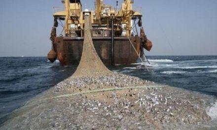 Acuerdo global contra la pesca ilegal