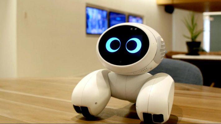 Domgy, el robot mascota de Roobo
