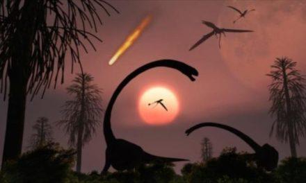 Las 5 extinciones de la Tierra