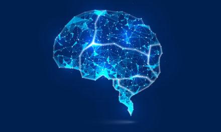 Los 12 tipos de inteligencia
