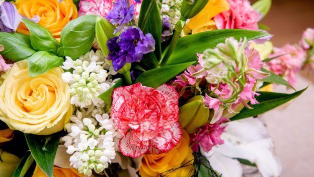 Remedios caseros contra alergias primaverales