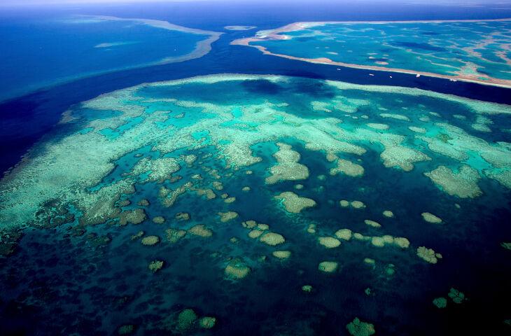 La amenaza de la desoxigenación oceánica