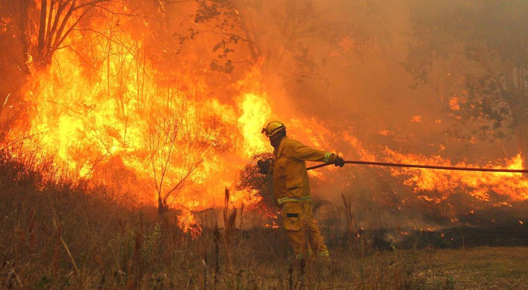 Emergencia agropecuaria por incendios
